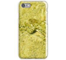 Underwater toad, Montichiello, Tuscany. Rospo nell'acqua, Montichiello, Toscana iPhone Case/Skin