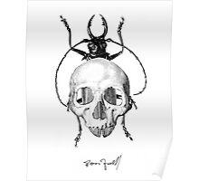 Beetle Skull Poster