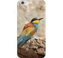 bee-eater iPhone Case/Skin