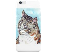 A Tabby superb! iPhone Case/Skin