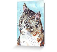 A Tabby superb! Greeting Card