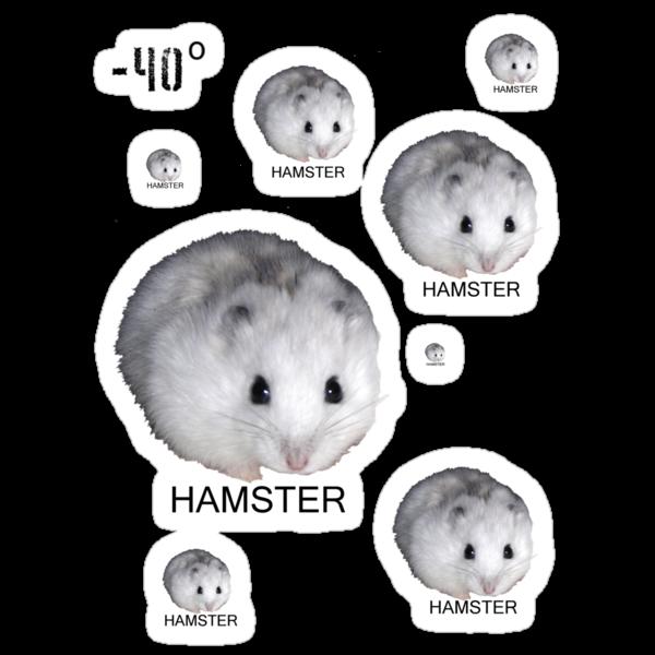 Hamsters Rule by ctfutureboy