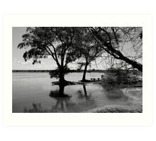 Banks of the Zambezi River Art Print