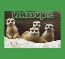 Meerkats Wassup?! by toffeespin