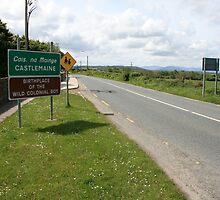 Castlemaine by John Quinn