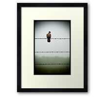 Do you mind? I am trying to sit on this barbed wire fence and contemplate the meaning of life and you're disturbing me... Framed Print