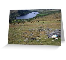 Healy Pass view Greeting Card