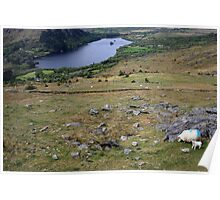 Healy Pass view Poster