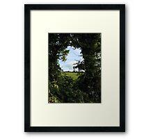 Rural Irish field Framed Print