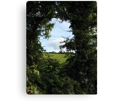 Rural Irish field Canvas Print