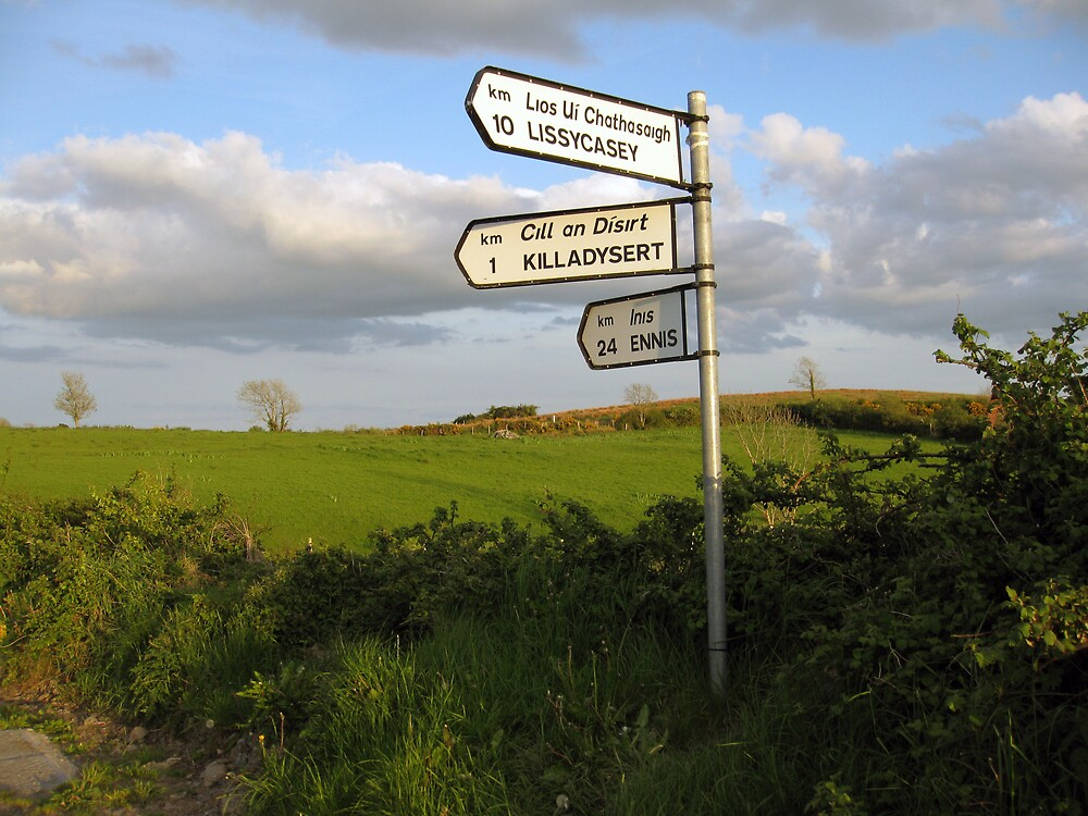 County Clare signposts by John Quinn