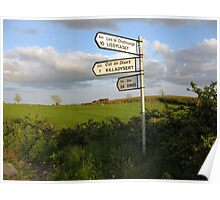 County Clare signposts Poster