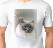 Ragdoll Lou Unisex T-Shirt