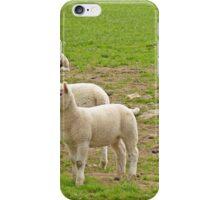 Alert Lambs iPhone Case/Skin
