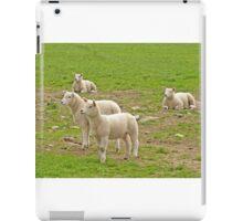 Alert Lambs iPad Case/Skin