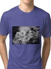 Smooth Dreams (mono) Tri-blend T-Shirt