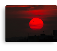 Sunset and Silhouettes Canvas Print