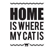 Home is where my cat is by nektarinchen