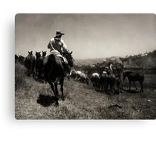 The Guardian In B&W. Canvas Print