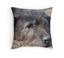 'The old girl' Throw Pillow