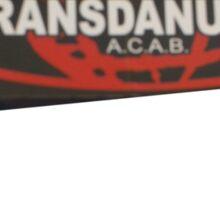 transdanubia acab 1312 Sticker