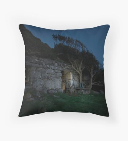Long House Throw Pillow