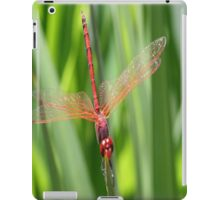 Closeup of Red Skimmer or Firecracker Dragonfly iPad Case/Skin