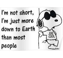 Short Joe Poster