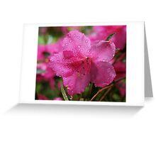 Fusia Greeting Card