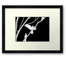 Birds in Black and White Framed Print