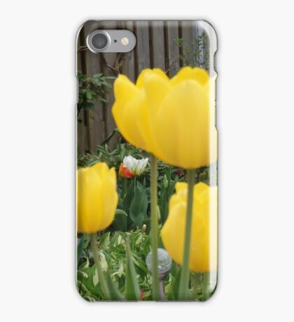 Garden Tulips iPhone Case/Skin