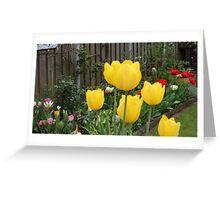 Garden Tulips Greeting Card