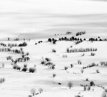 Last winter by michel vaqué
