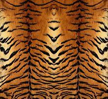 Tiger  by chaosdivine