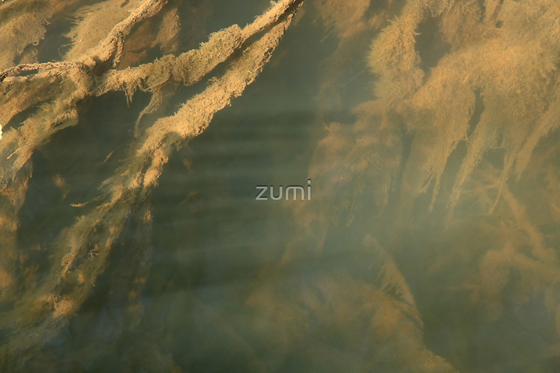 Beneath the surface V by zumi