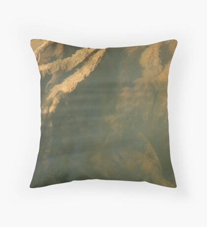 Beneath the surface V Throw Pillow