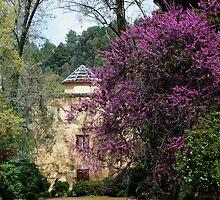 Granada Gardens by indianne
