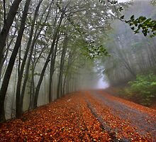 Mystic road on Pangeo mountain by Hercules Milas