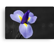 Mother's Day Gift Canvas Print