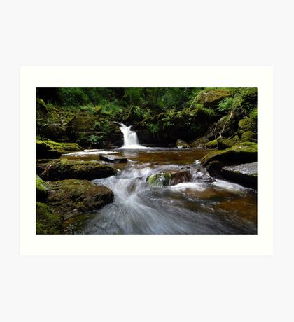 Down in the Gorge Art Print
