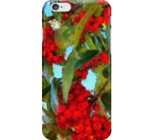 Colorful Red Berries iPhone Case/Skin