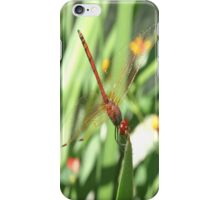 Red Skimmer or Firecracker Dragonfly iPhone Case/Skin