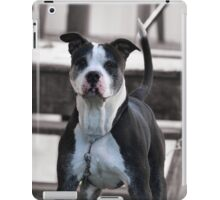 Selectively Cute iPad Case/Skin