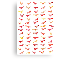 An Army of Undisciplined Birds Canvas Print