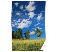 Trees with Cumulus Fractus  Poster