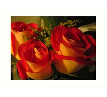 Flames in Bloom - Yellow & Red Roses Art Print