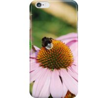 Echinacea Purpurea with Bee 5 iPhone Case/Skin