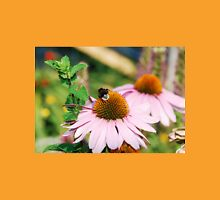 Echinacea Purpurea with Bee  Womens Fitted T-Shirt