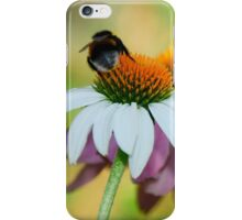 Echinacea Purpurea with Bee 6 iPhone Case/Skin