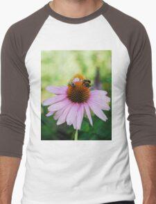Echinacea Purpurea with Bees  Men's Baseball ¾ T-Shirt